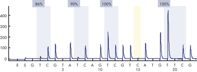 Highly methylated control DNA.